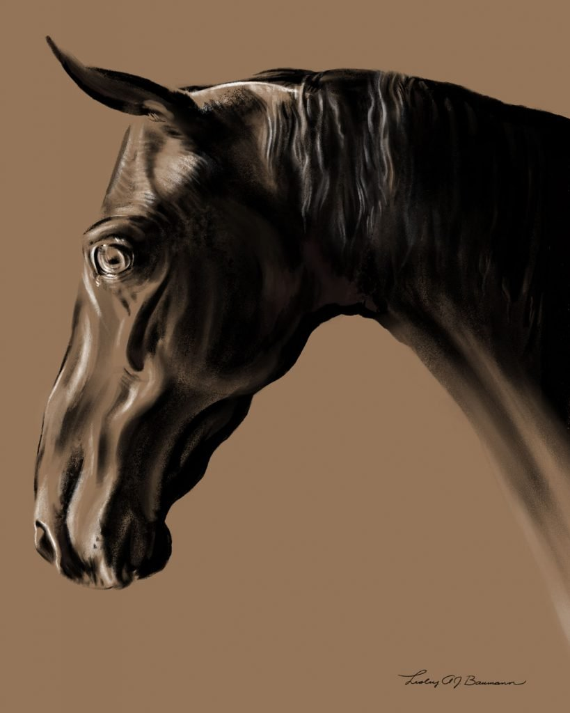 digital charcoal portrait of the American Saddlebred mare Get Some