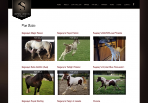 Shady-Spring-Stables-for-sale-page