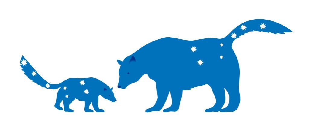 Ursa-Minor-Ursa-Major-Bear-Illustration