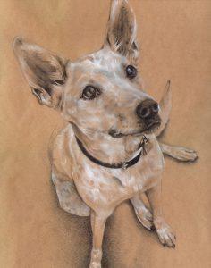 Dakota in Pencil - colored pencil on colored paper
