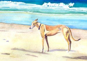 Mae at Dog Beach - watercolor