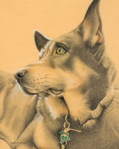 Monty - colored pencil on colored paper