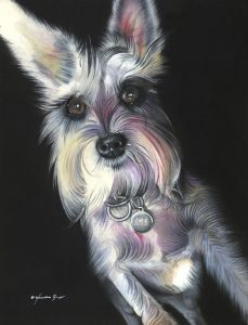 Sadie - acrylic, watercolor and colored pencil on board