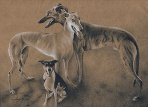 Toby, Kylee, Skeeter - colored pencil on colored paper